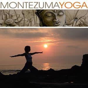 Dagmar Spremberg Yoga_YouTube_Purifying sunrise flow